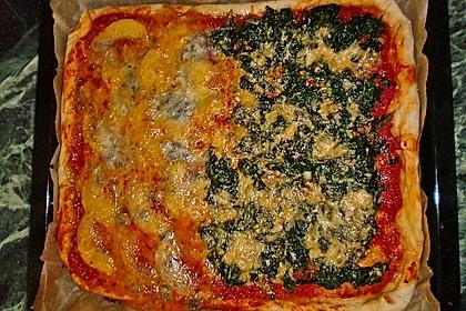 Italienischer Pizzateig 287