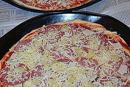 Italienischer Pizzateig 126
