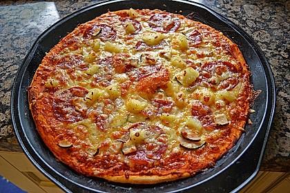 Italienischer Pizzateig 15