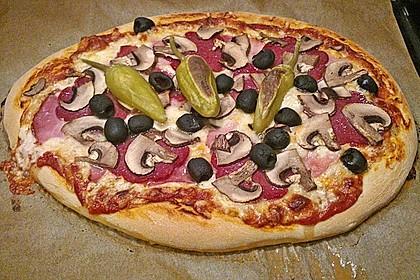 Italienischer Pizzateig 63