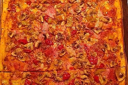 Italienischer Pizzateig 209