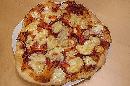Italienischer Pizzateig 20