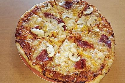 Italienischer Pizzateig 181