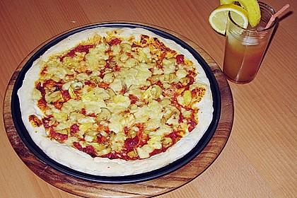 Italienischer Pizzateig 293