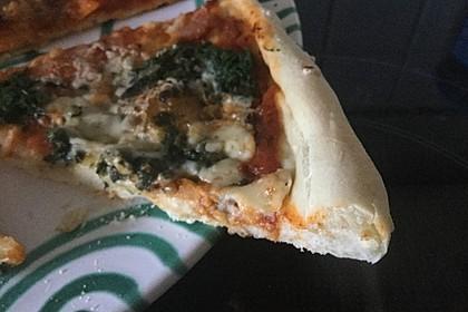 Italienischer Pizzateig 289