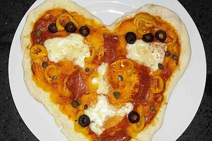 Italienischer Pizzateig 100