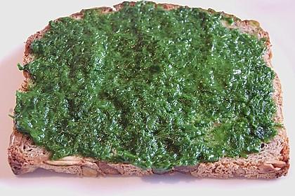 Bärlauch - Paste 17