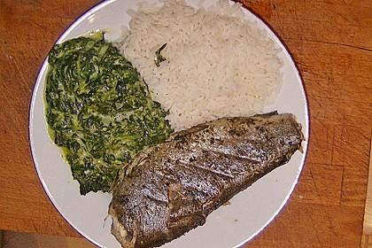 Gedünstete Forellen mit Reis und Spinat - Sauce