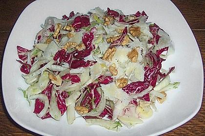 Radicchio - Fenchel - Salat 12