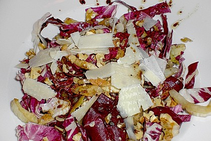 Radicchio - Fenchel - Salat 14