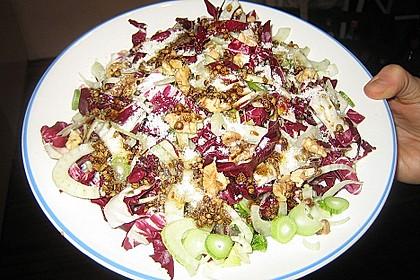 Radicchio - Fenchel - Salat 16