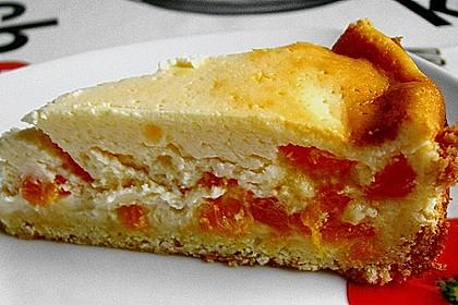 Käsekuchen mit Mandarinchen 35