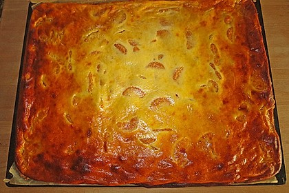 Käsekuchen mit Mandarinchen 68