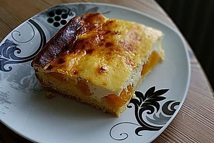 Käsekuchen mit Mandarinchen 41
