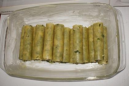 Cannelloni mit Spinat - Thunfischfülle 1