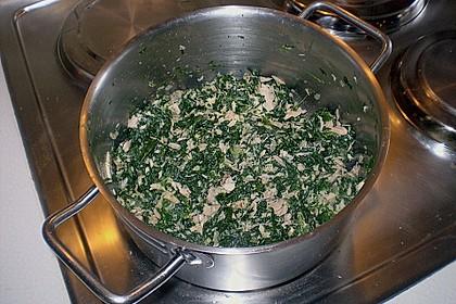 Cannelloni mit Spinat - Thunfischfülle 2