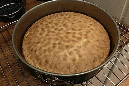 Biskuit - Grundrezept, mit Vanillepudding 25