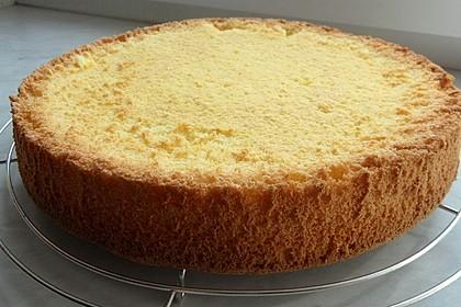 Biskuit - Grundrezept, mit Vanillepudding 4