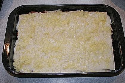 Lasagne 244