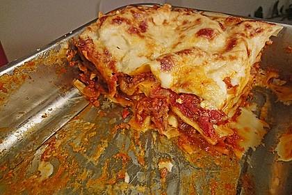 Lasagne 256