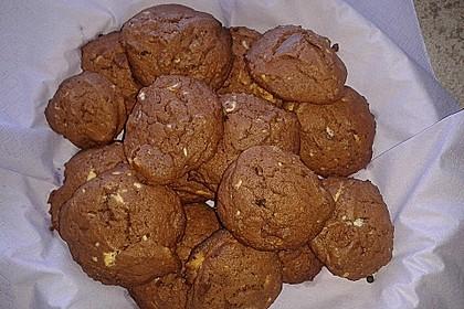 Sucht - Cookies 24