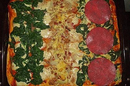 Pizzateig 2