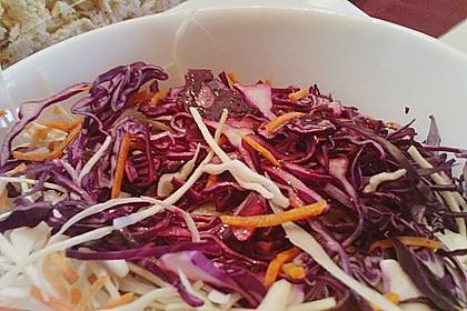 Rotkohl - Salat 4