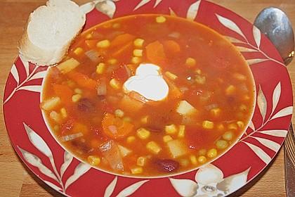 Mexikanische Gemüsesuppe 12