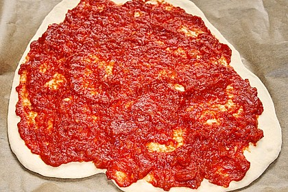 Lisas Pizzasauce 7