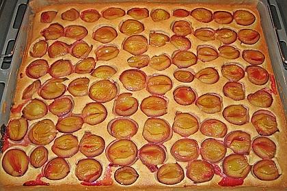 Zwetschgenkuchen vom Blech 10