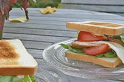 Club Sandwich 4