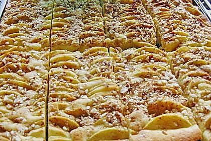Schwedischer Apfelbiskuit 3