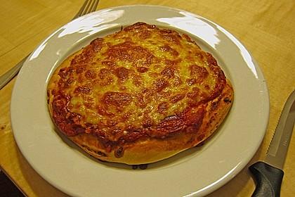 Pizzateig 55