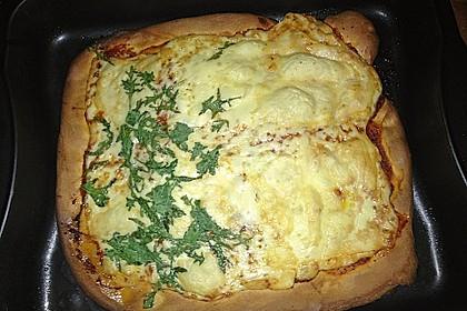Pizzateig 23