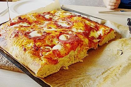 Pizzateig 57