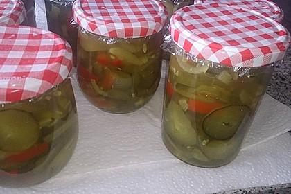 Gurken - Salat 10