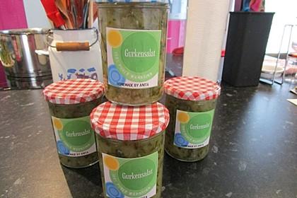 Gurken - Salat 9