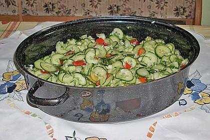 Gurken - Salat 12