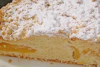 Marillen (Aprikosen) - Rahmkuchen mit feinen Streuseln 19