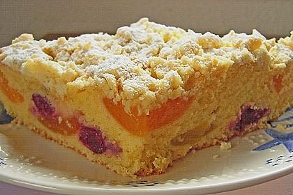 Marillen (Aprikosen) - Rahmkuchen mit feinen Streuseln 27