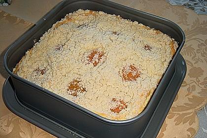 Marillen (Aprikosen) - Rahmkuchen mit feinen Streuseln 30