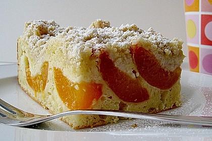 Marillen (Aprikosen) - Rahmkuchen mit feinen Streuseln 3