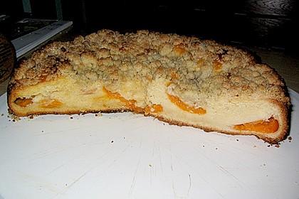 Marillen (Aprikosen) - Rahmkuchen mit feinen Streuseln 28