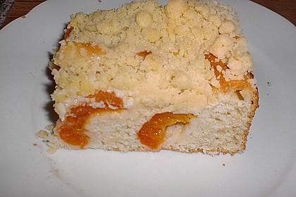 Marillen (Aprikosen) - Rahmkuchen mit feinen Streuseln 12