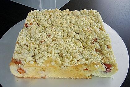 Marillen (Aprikosen) - Rahmkuchen mit feinen Streuseln 15
