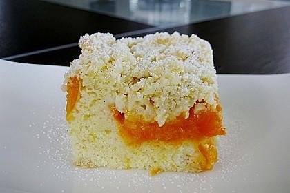 Marillen (Aprikosen) - Rahmkuchen mit feinen Streuseln 20