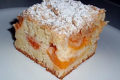 Marillen (Aprikosen) - Rahmkuchen mit feinen Streuseln 8