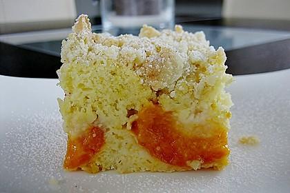 Marillen (Aprikosen) - Rahmkuchen mit feinen Streuseln 9