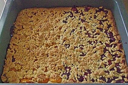 Marillen (Aprikosen) - Rahmkuchen mit feinen Streuseln 40