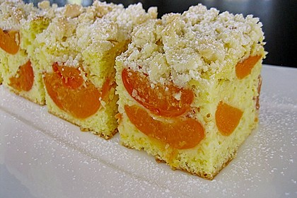Marillen (Aprikosen) - Rahmkuchen mit feinen Streuseln 1